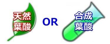 天然葉酸合成葉酸.png
